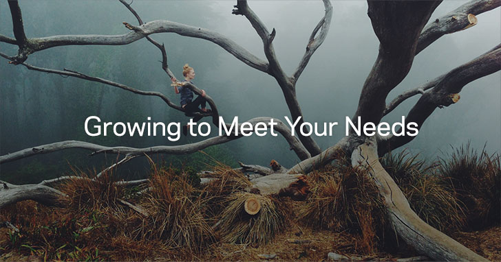 Growing to Meet Your Needs
